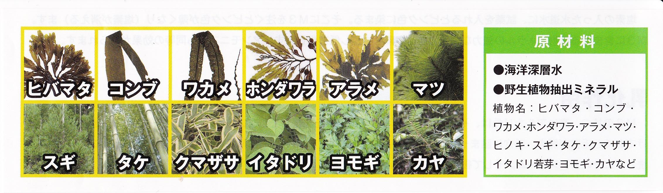 原材料 海洋深層水 野生植物抽出ミネラル